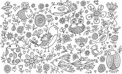Flower Bird Doodle Vector Illustration Set