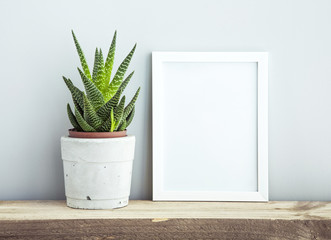 frame with succulent in diy  pot. Mock up. Scandinavian design