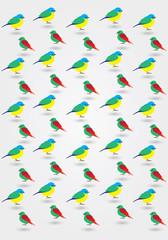 Ptaki wzór, tło