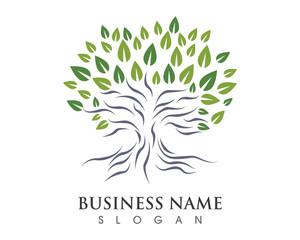 Tree Logo 3