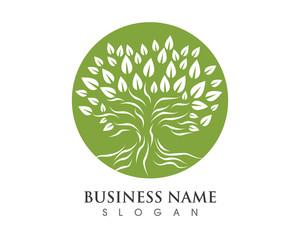 Tree Logo 11