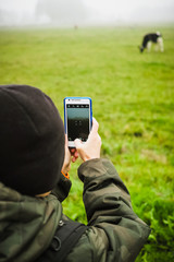 Child with smartphone taking picture of a cow