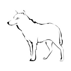 Wolf silhouette isolated on white background. Logo. Vector illus