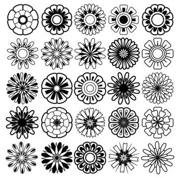 flower vector set