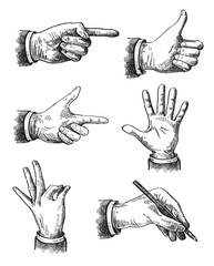 Illustration of hand