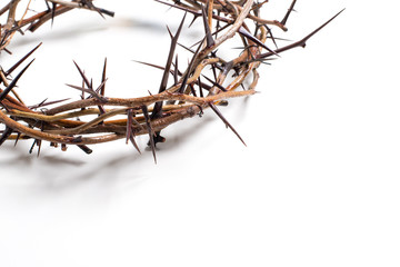 A Crown Of Thorns On White Background