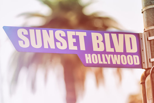 Sunset Blvd Hollywood Street Sign
