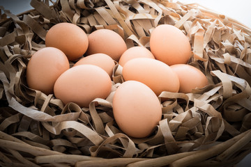 Chicken eggs in the straw paper