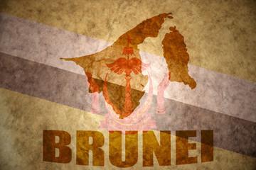brunei vintage map