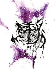 watercolor paint of tiger