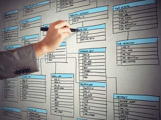 Organize a database Wall mural