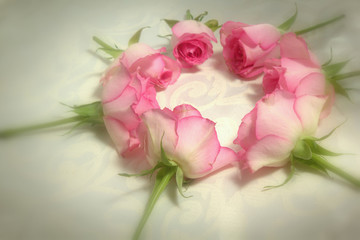 Pink roses in the shape of a circle