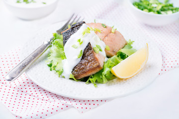 Grilled red fish fillet