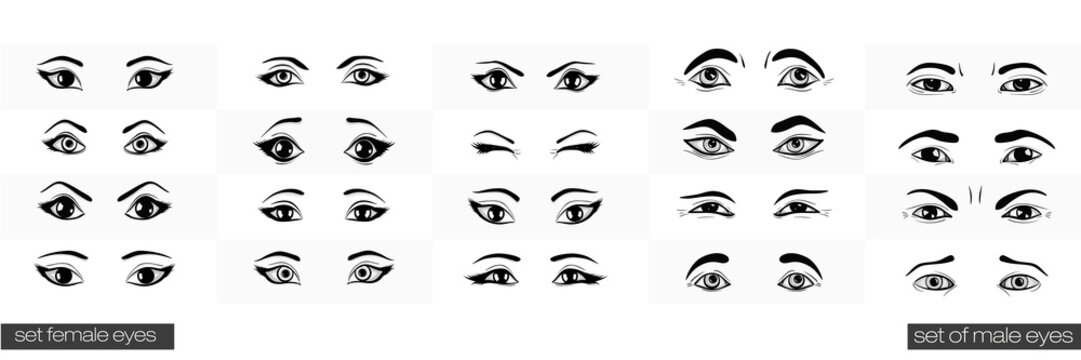 Set of female and male views of the eye