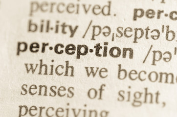Dictionary definition of word perception