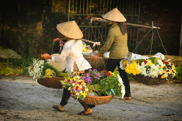 Life of vietnamese florist vendor in Ha Noi, VIETNAM