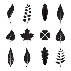 Vector leaves icon set on white background