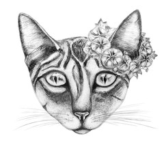 Hand draw of cat with a wreath of flowers.For prints.Black and