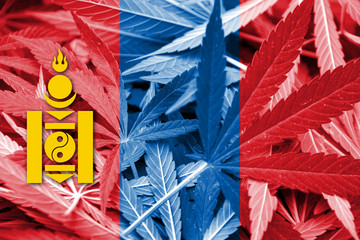 Mongolia Flag on cannabis background. Drug policy.