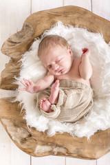 Newborn Kleiner Bub von oben in einer Schale