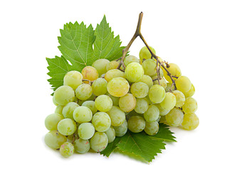 Green grape on white