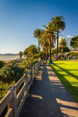 Path at Palisades Park, in Santa Monica, California.