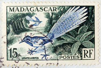 Madagascar Bird Stamp