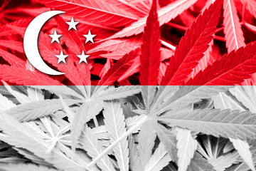 Singapore Flag on cannabis background. Drug policy.
