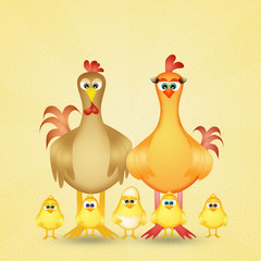 chickens family