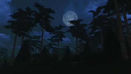 Pine wood under full moon