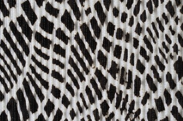 Black and White design on pleated fabric