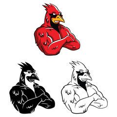 Coloring book Cardinal Bird cartoon character