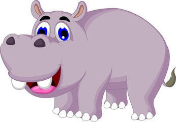 funny hippo cartoon posing