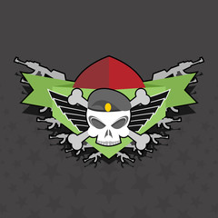 military logo. skull with wings on the shield