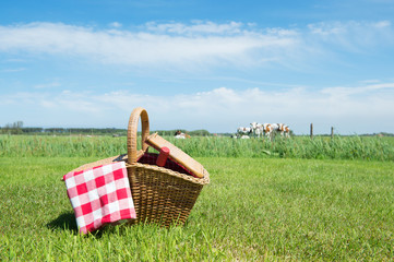 Deurstickers Picknick Picnic basket in the country