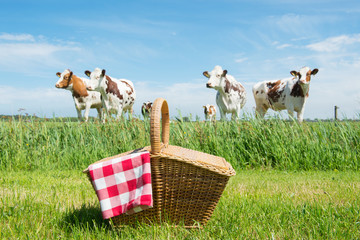 Zelfklevend Fotobehang Picknick Picnic basket in the country