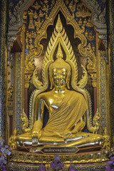 The Buddha image in a temple
