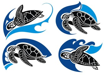 Sea turtle .Summer symbols
