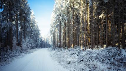 Winter Wanderung im Harz