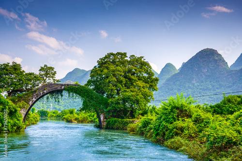 природа деревья трава река мост бесплатно