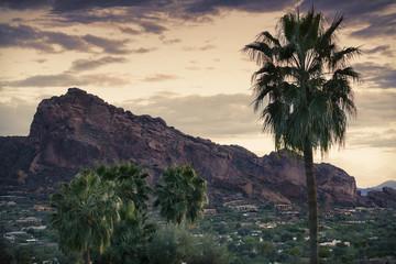 Wall Mural - Desert landscape - Phoenix, Arizona