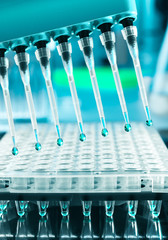 Tools for DNA amplification, scientific background