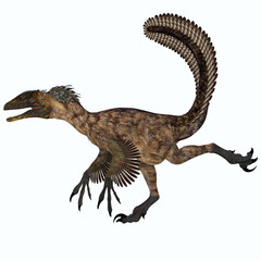 Deinonychus over White