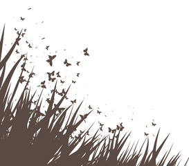 grass and butterflies vector