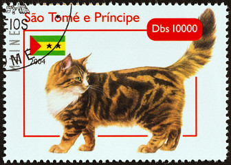 Maine Coon cat (Sao Tome and Principe 2004)