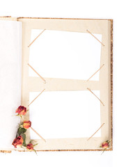 Top view of open photo album book with withered rose