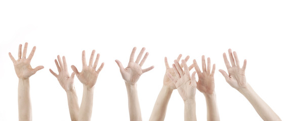 hands up on white