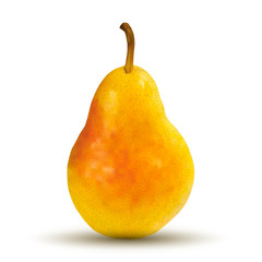 Big pear on white background. Created using gradient meshes.
