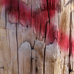 Old wood background with graffiti.
