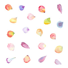 watercolor flower petals